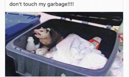 donttouchmygarbage-possum